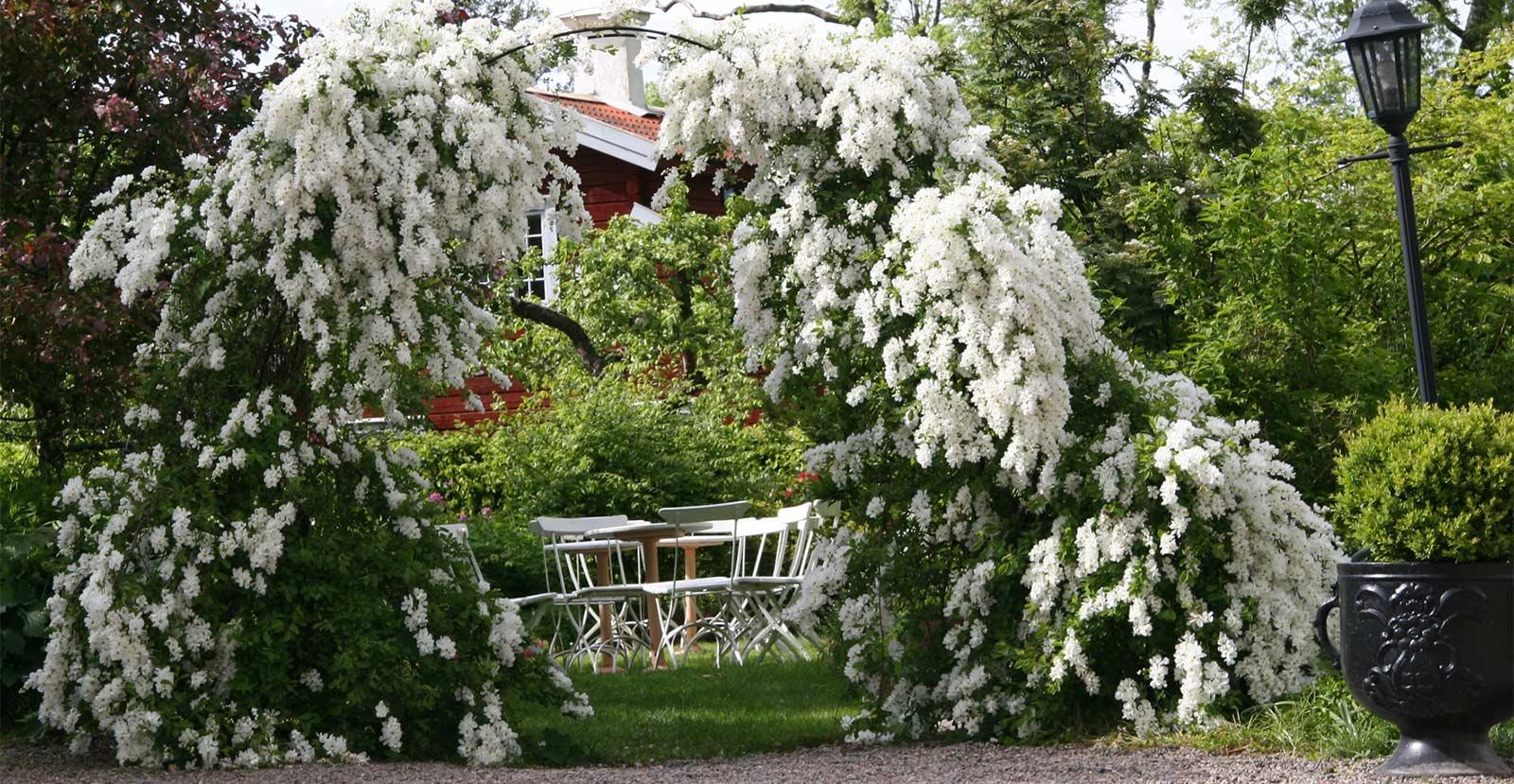 Sommar på Dufweholms Herrgård